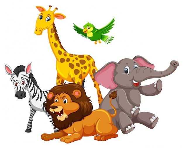 Group of wild animals Premium Vector