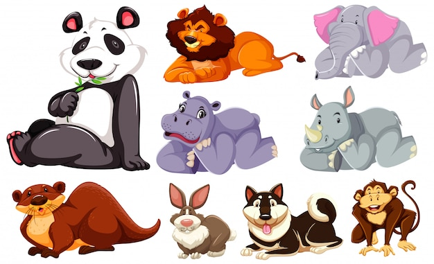 Group of wild cartoon character Free Vector
