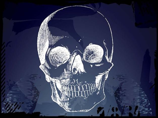 Grunge pirate skull sketch Free Vector