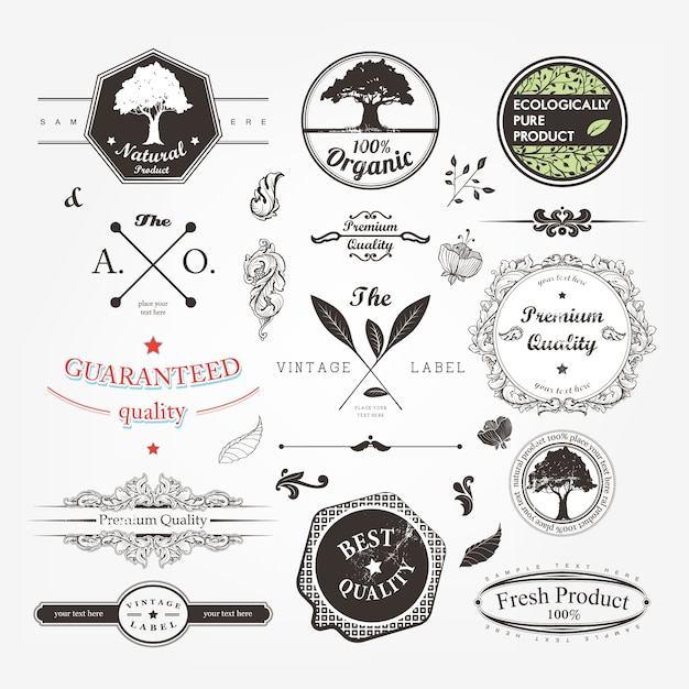 guarantee set card type frame Premium Vector