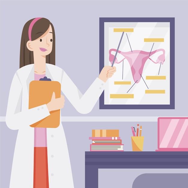 生殖器系を説明する婦人科医 無料ベクター