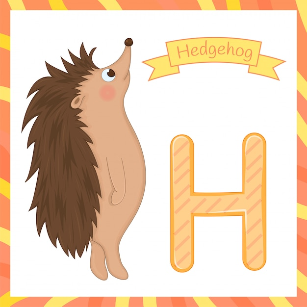ハリネズミのかわいい子供動物アルファベットh文字フラッシュカード Premiumベクター