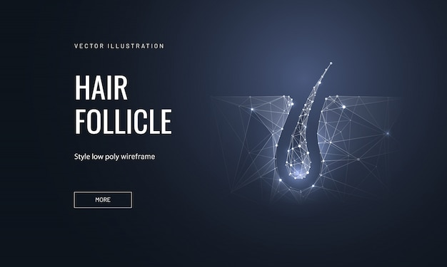 Hair follicle in polygonal wireframe style Premium Vector