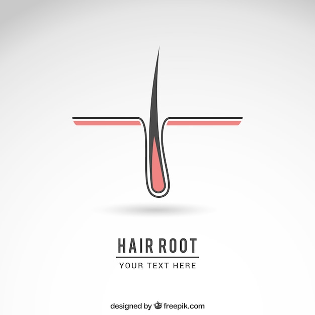 Hair Root Logo Vector Free Download