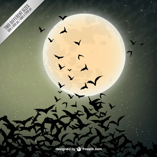 Halloween background with bats silhouettes Free Vector