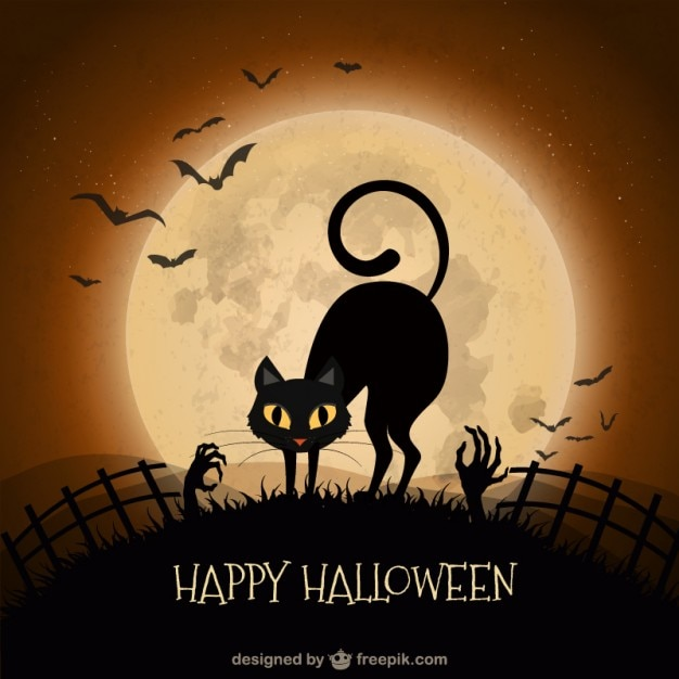 Halloween background with black cat Vector | Free Download