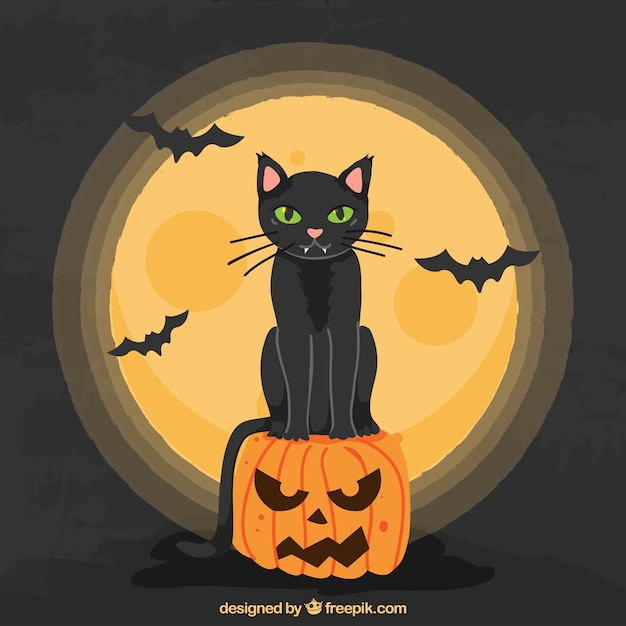 Halloween cat with full moon and bats Vector | Free Download