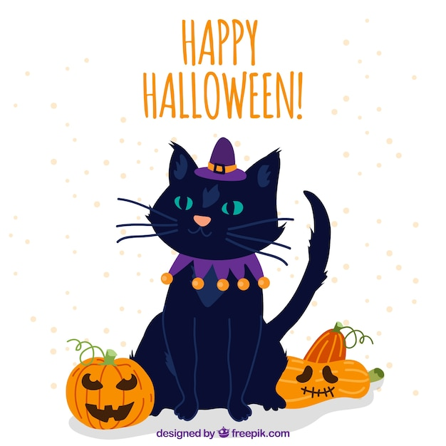 Halloween Cat With Witch Hat And Pumpkins Free Vector