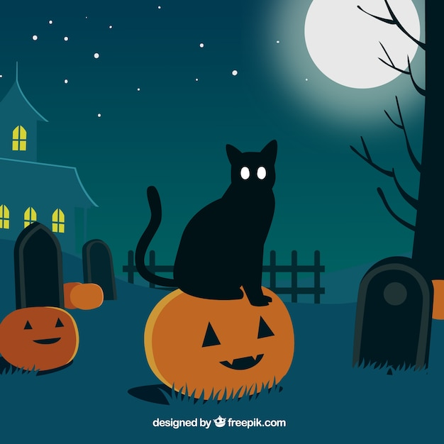 Halloween landscape background with cat on top of a pumpkin