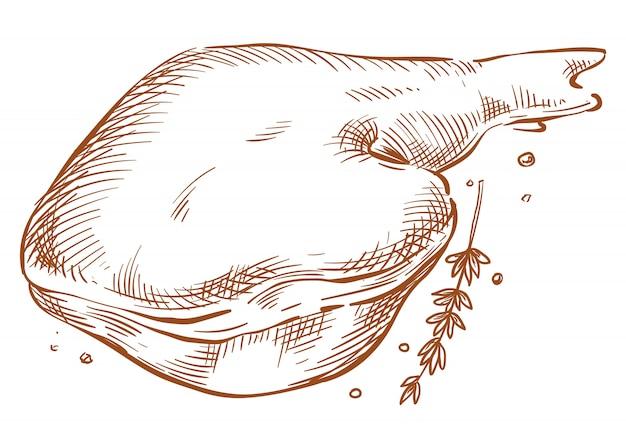 Ветчина векторный рисунок руки рисунок Premium векторы