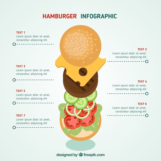 Hamburger infographic Free Vector