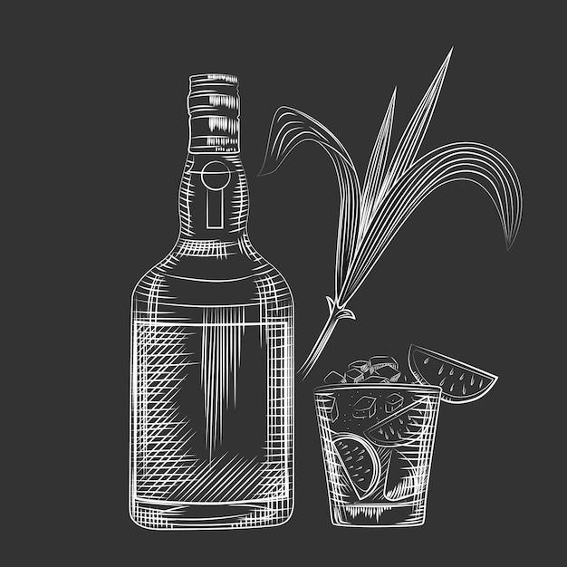 Hand draw cane leaves on black chalkboard. Premium Vector