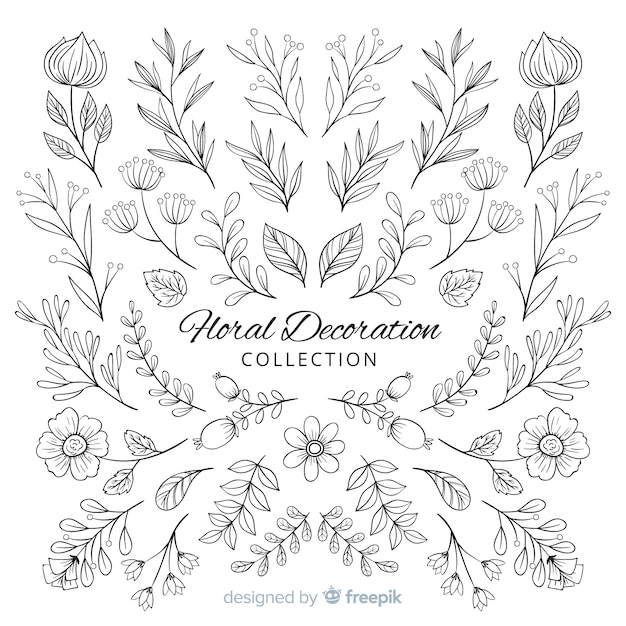 Hand draw floral decoration elements Free Vector