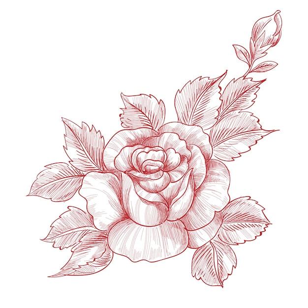 손 그리기 및 스케치 장미 꽃 디자인 무료 벡터