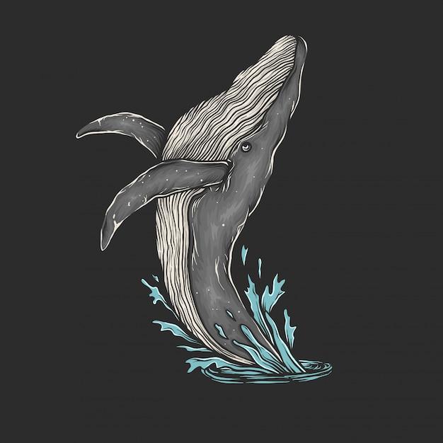 Рука рисунок старинные кит прыжок векторные иллюстрации Premium векторы