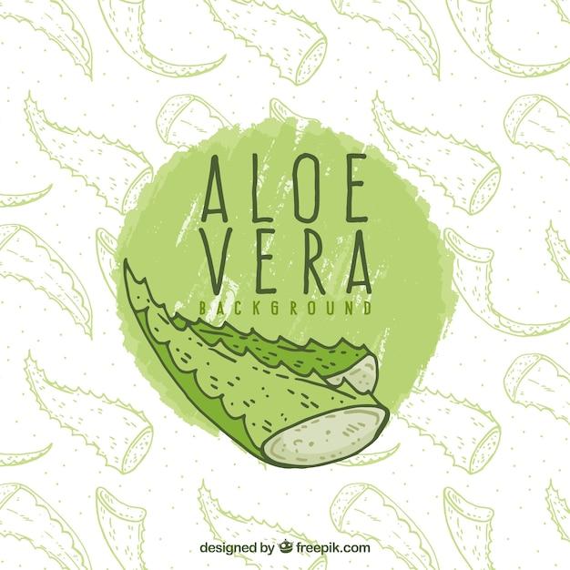 Hand drawn aloe vera background Free Vector