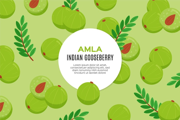 Hand drawn amla fruit illustrated Free Vector