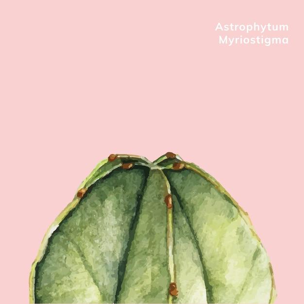 Hand drawn astrophytum myriostigma Free Vector
