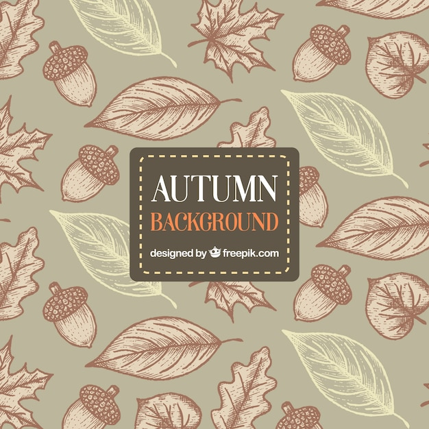 Hand drawn autumn background with artistic style Free Vector