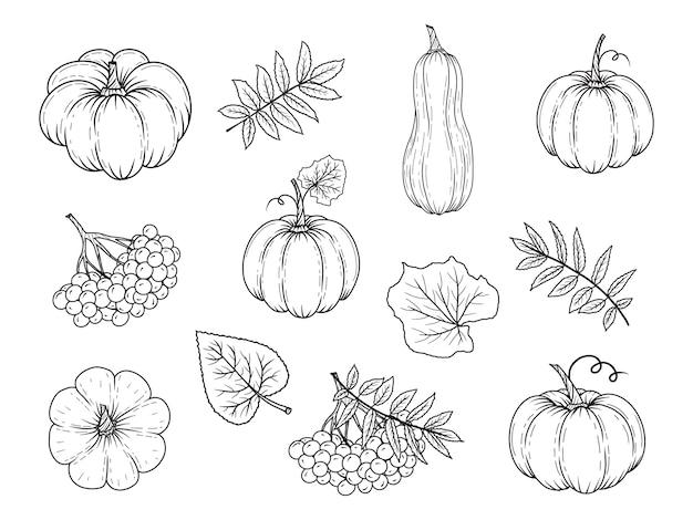 Pumpkin black and white pumpkin clipart black and white kids clipartme -  Cliparting.com