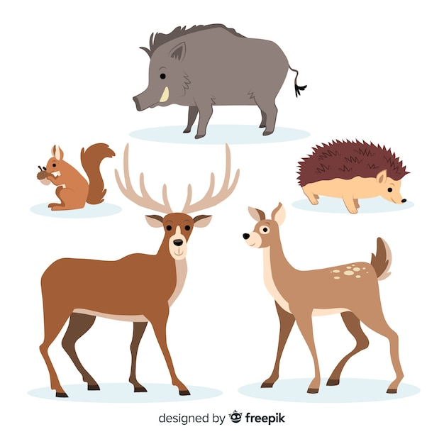 Hand drawn autumn forest animals collection Free Vector