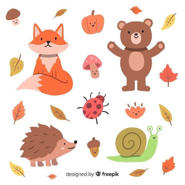 手描き秋の森の動物コレクション 無料ベクター