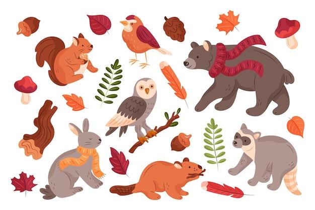 손으로 그린 가을 숲 동물 컬렉션 무료 벡터