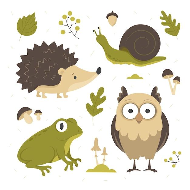 Animali della foresta di autunno disegnati a mano impostati Vettore gratuito