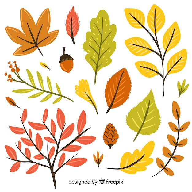 Hand drawn autumn forest leaves collection Free Vector