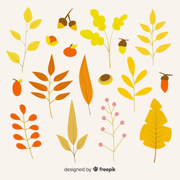 Hand drawn autumn leaves collection Free Vector