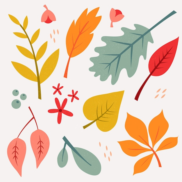 Collezione di foglie autunnali disegnati a mano Vettore gratuito
