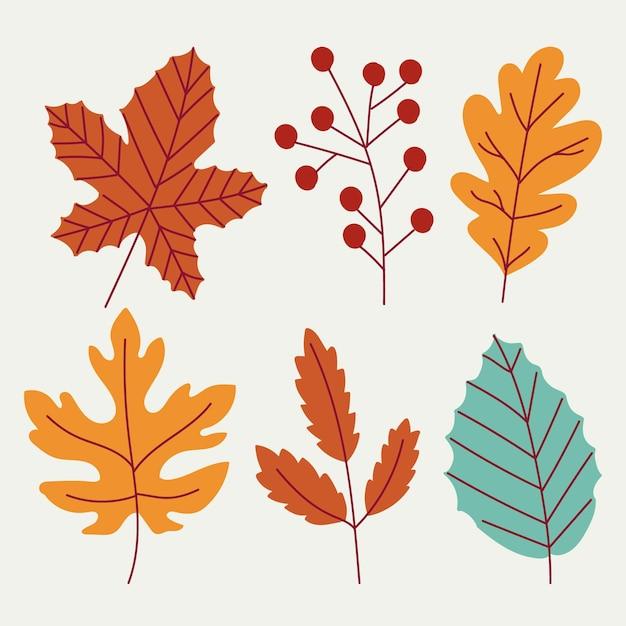 Коллекция рисованной осенних листьев Бесплатные векторы