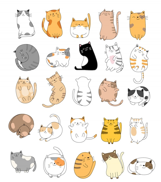 Коллекция рисованной baby cat Premium векторы