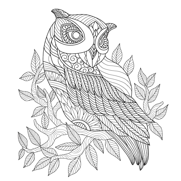 Hand drawn beautiful owl Premium Vector