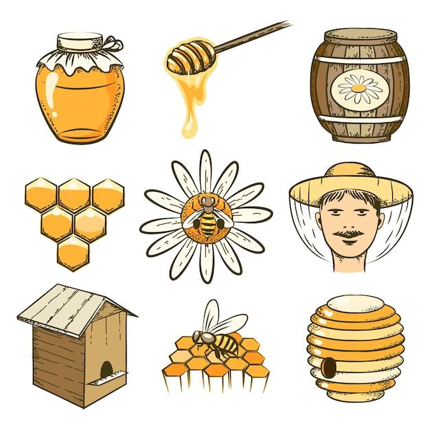 Рисованной пчеловодство, мед и пчелы иконки. пищевые сладости, насекомые и клетки, бочки и соты Бесплатные векторы