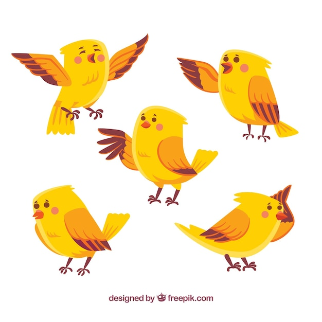 Hand drawn bird collection in yellow Free Vector