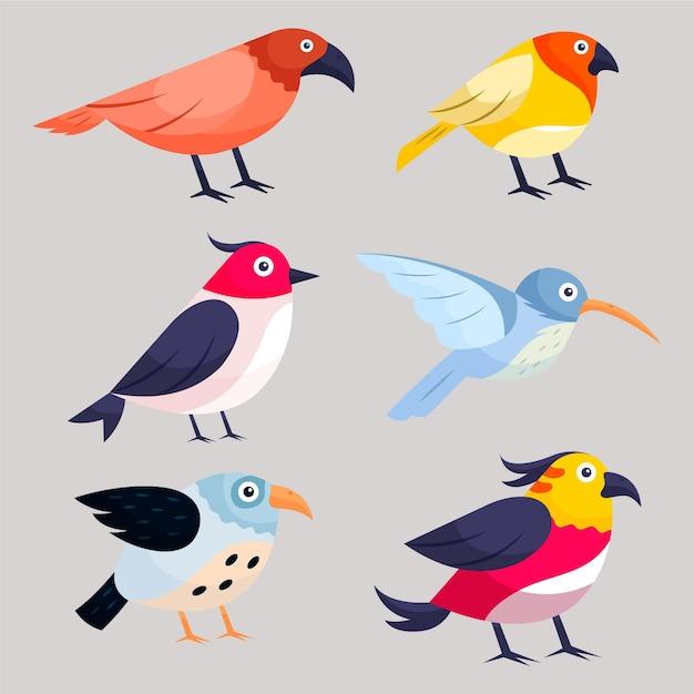 手描き鳥コレクション Premiumベクター