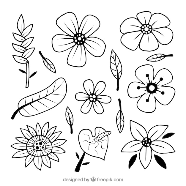 Hand drawn black and white tropical flower set
