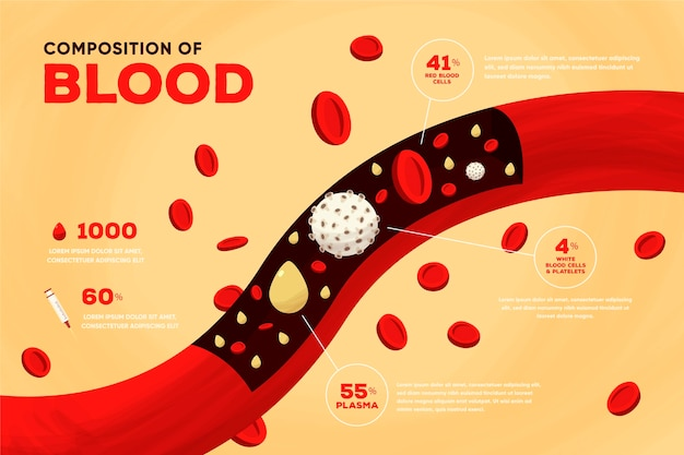 Hand drawn blood infographic Free Vector