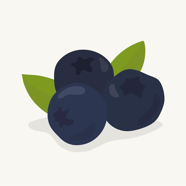 Illustrazione disegnata a mano della frutta del mirtillo Vettore gratuito
