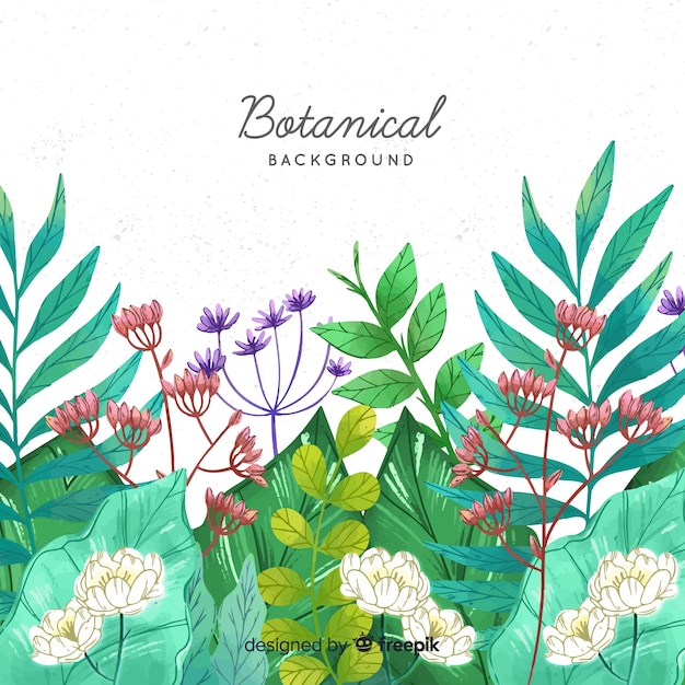Hand drawn botanical background Free Vector