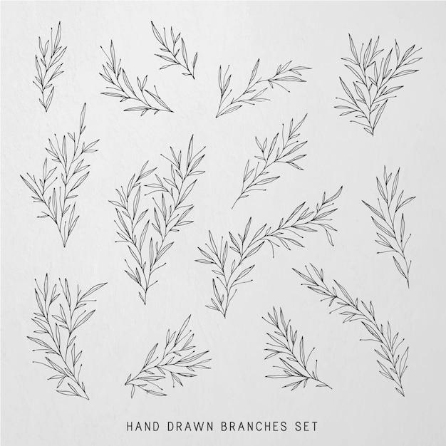 Hand drawn botanical illustrations Free Vector