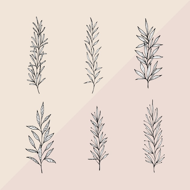 Hand drawn branches with white leaves Free Vector