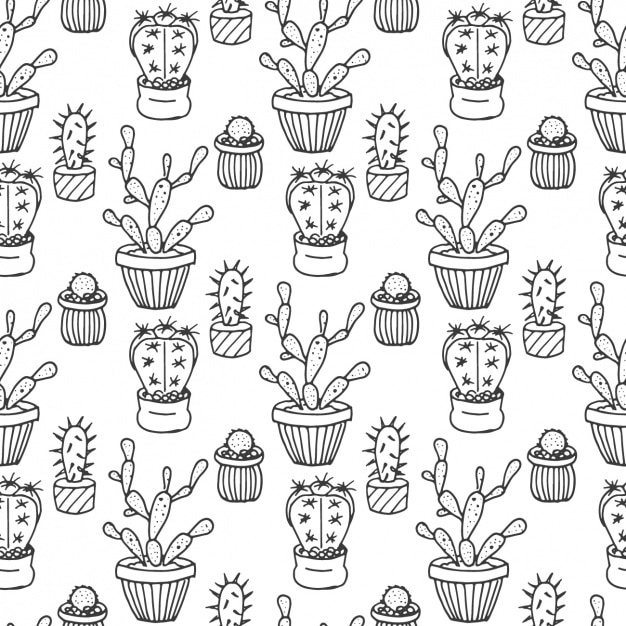 Hand Drawn Cactus Pattern Vector Free Download
