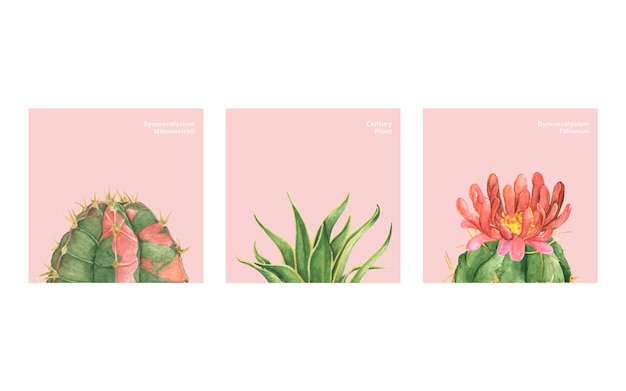 Hand drawn cactus and succulents Free Vector