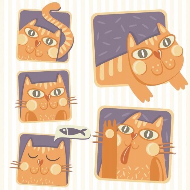 Hand drawn cat designs