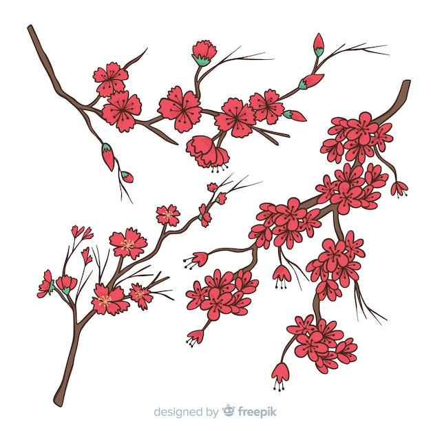 Hand drawn cherry blossom branch illustration Free Vector