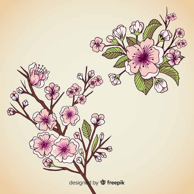 Hand drawn cherry blossom branch Free Vector