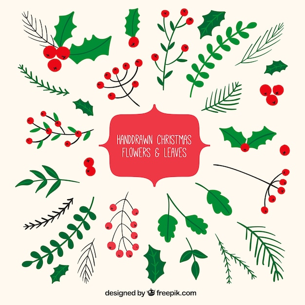 hand drawn christmas tree png images