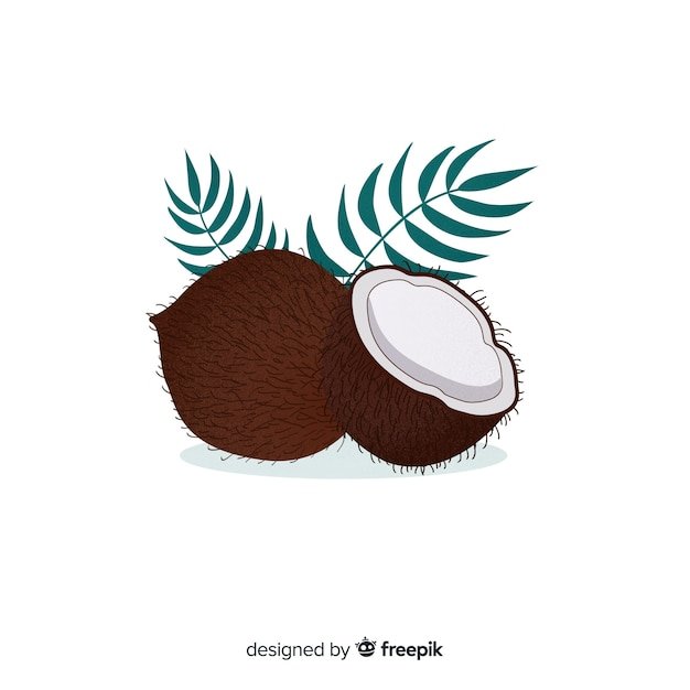 Hand drawn coconut background Free Vector